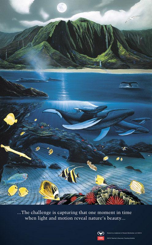 4 x 6.5 feet Kauai Moon 1997